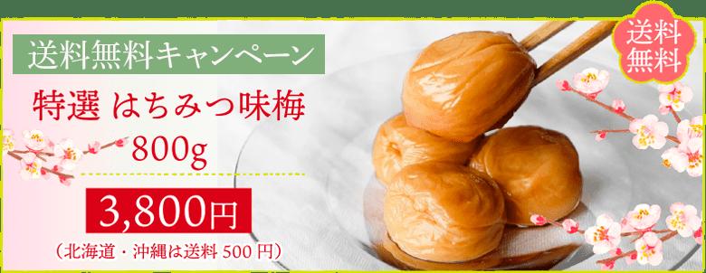 送料無料 特選はちみつ味梅800gが送料無料で3800円