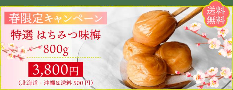 春限定 特選はちみつ味梅800gが送料無料で3800円